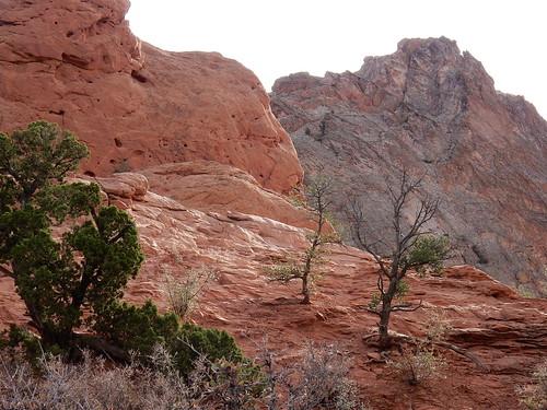 Colorado Springs - Garden of the Gods - 5