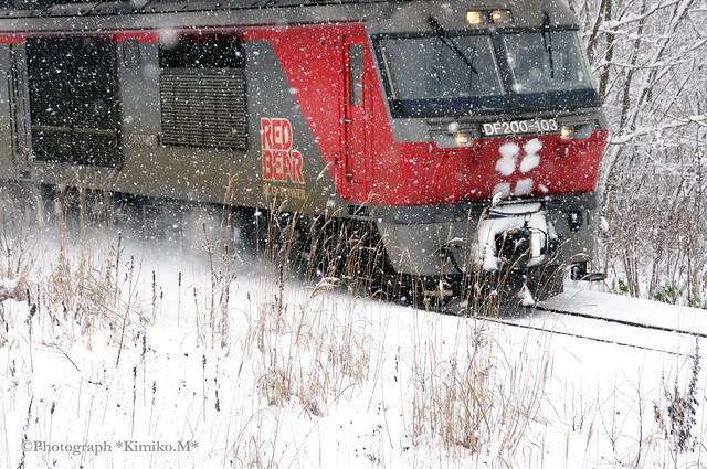 DF200-103②