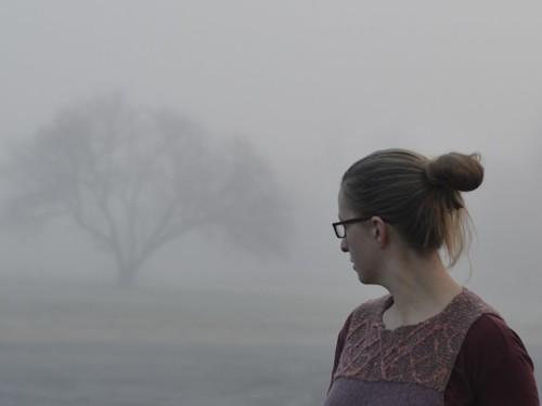 meristem fog