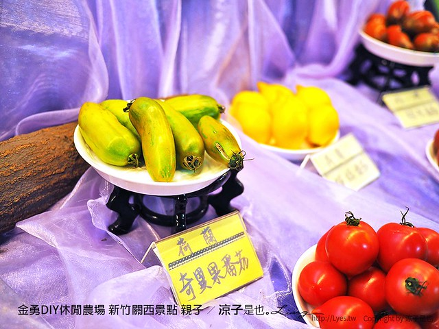 金勇DIY休閒農場 新竹關西景點 親子 8
