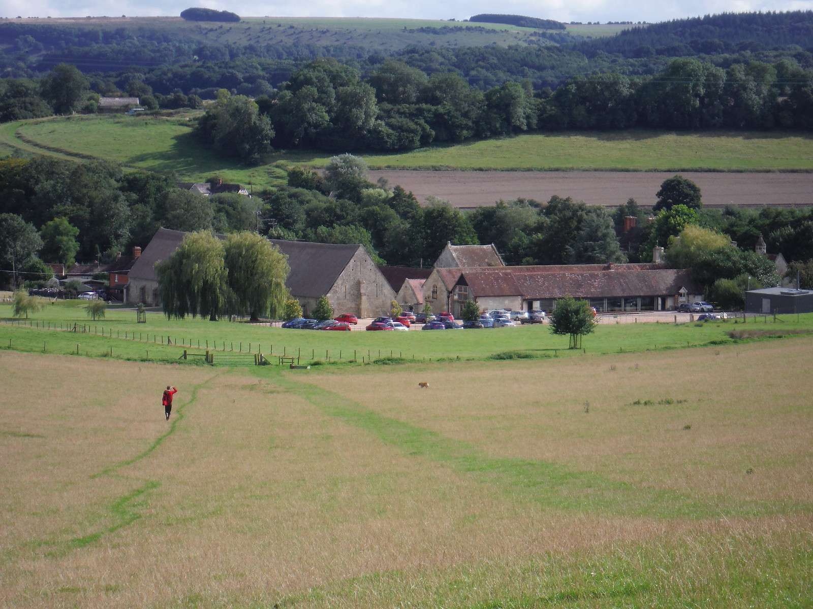 Final Descent towards Place Farm, Tisbury SWC Walk 248 Tisbury Circular via Hindon