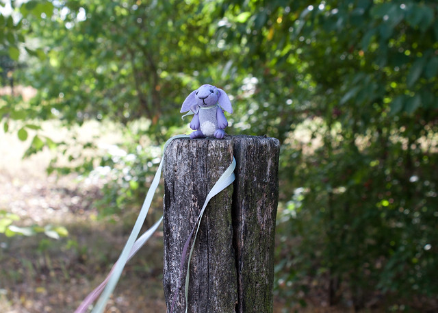 lilac bunny - windy day