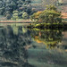 Island on the lake. by Kevin_R_Shaw
