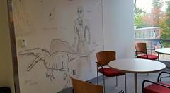 Fun with whiteboard walls