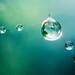 Spiderweb sparkle by jilllian2