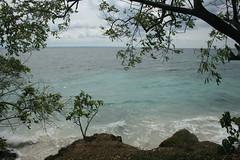 52 - Cayo Levantado (Bacardi Island / Bacardi-Insel)