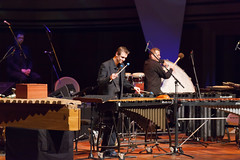 percussion, marimba, xylophone, musician, music, performance,