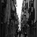 Small photo of Life in Alley's