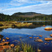 Whitewall Mtn from Shoal Pond by Gary Tompkins