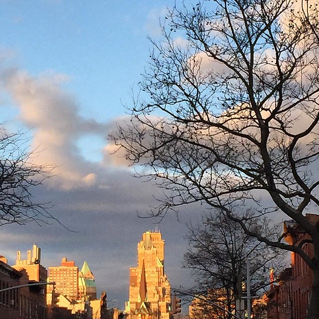 December sky. #carrollgardens #brooklyn