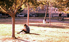Saturday in the Park