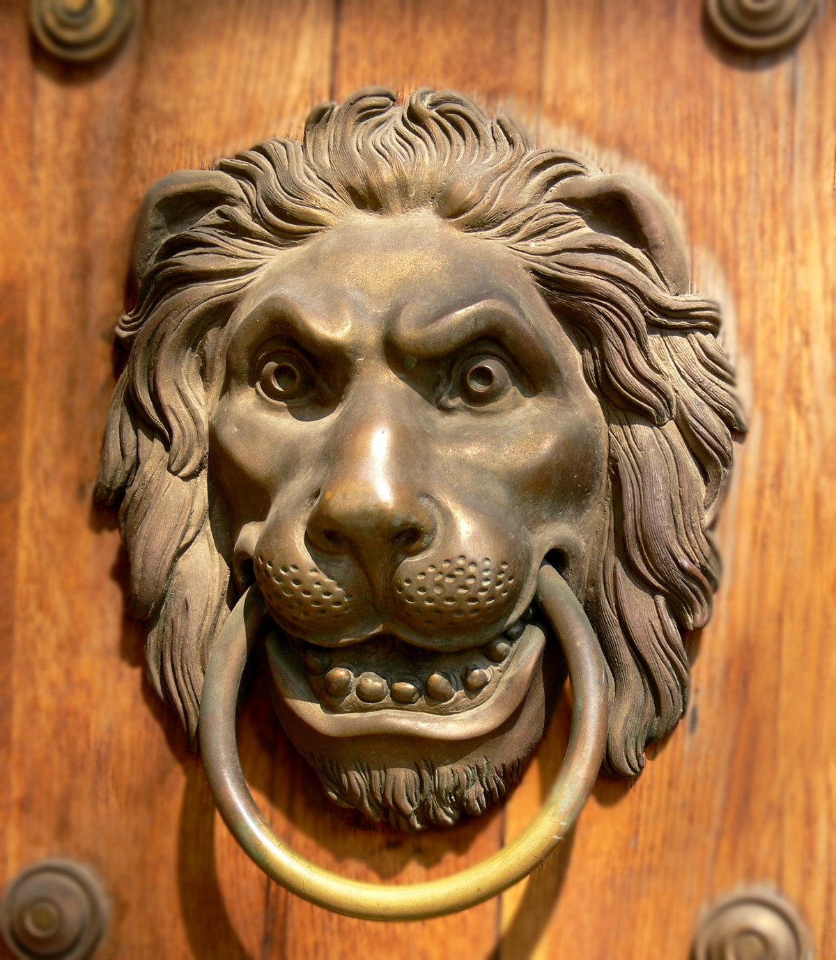 Lion door knocker at Lazienka Palace, Warsaw, Poland