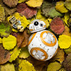 BB-8 : The Lovely Colours of Fall.