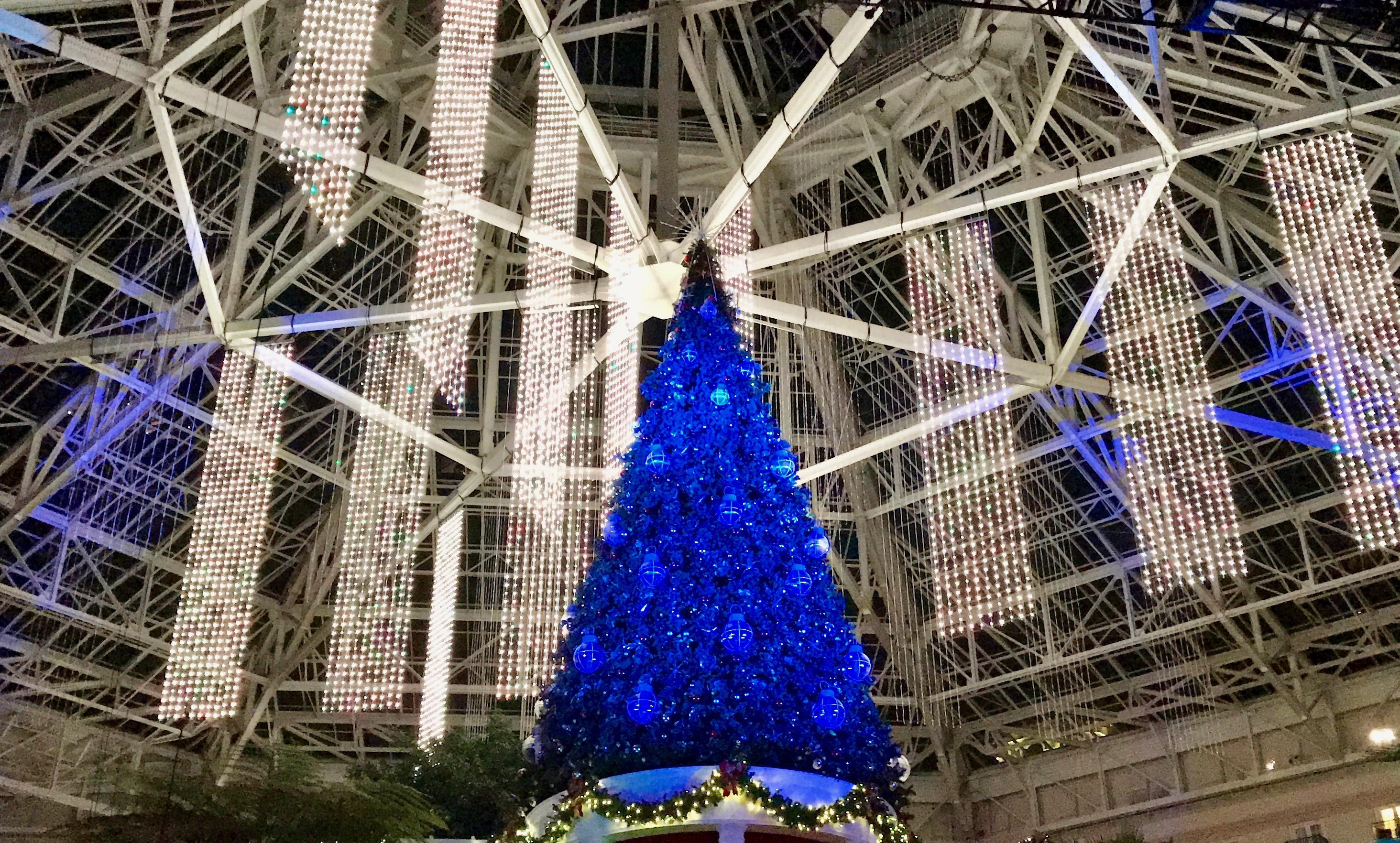 christmas at gaylord palms 2016 - Christmas At Gaylord Palms