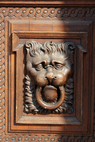 Lion door detail