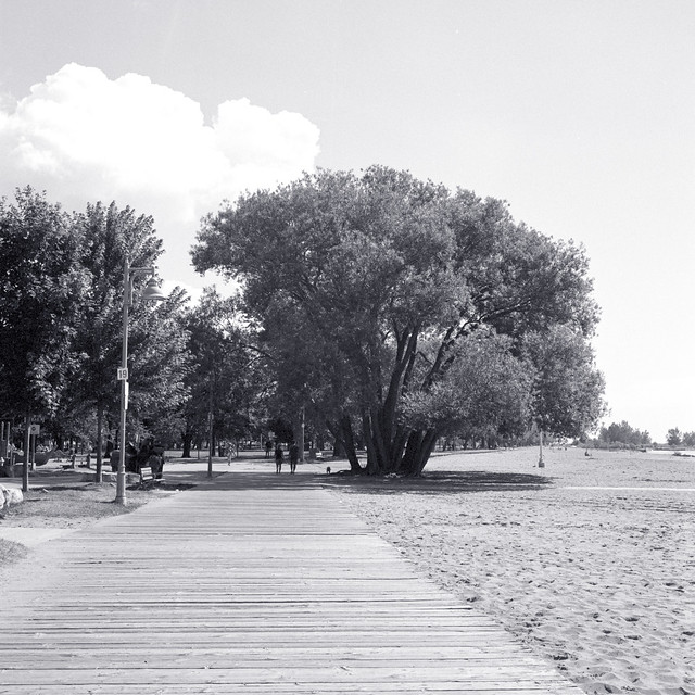 Woodbine Beach Boardwalk 1