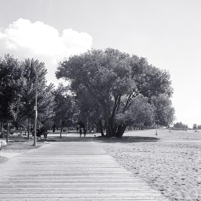 Woodbine Beach Boardwalk 1