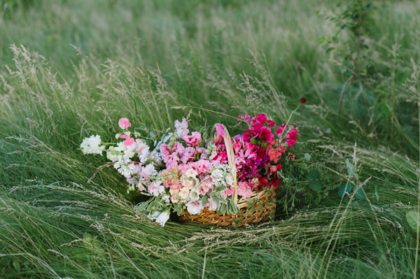 Summer Wild Flowers