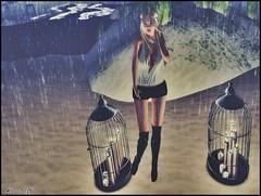 Jails & Rain