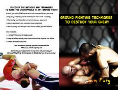 Ground Fighting Techniques to Destroy Your Enemy: Mixed Martial Arts, Brazilian Jiu Jitsu and Street Fighting Grappling Techniques and Strategy