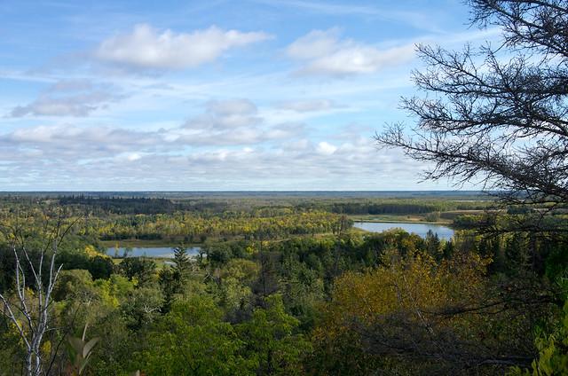 Spruce Woods Marshs Lake
