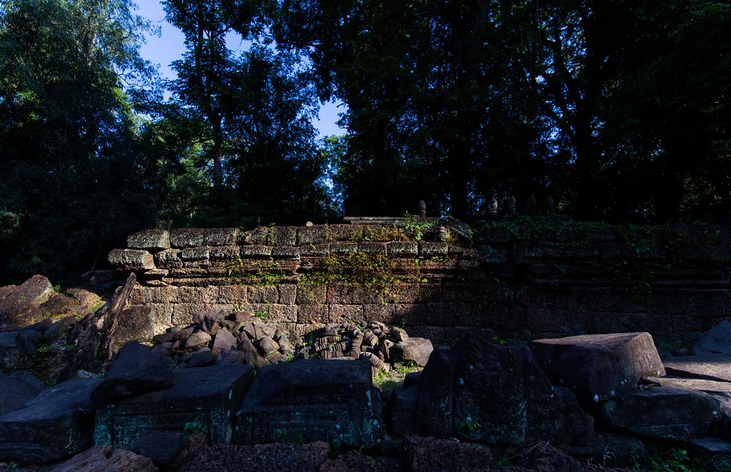 Ta Prohm Angkor-2679