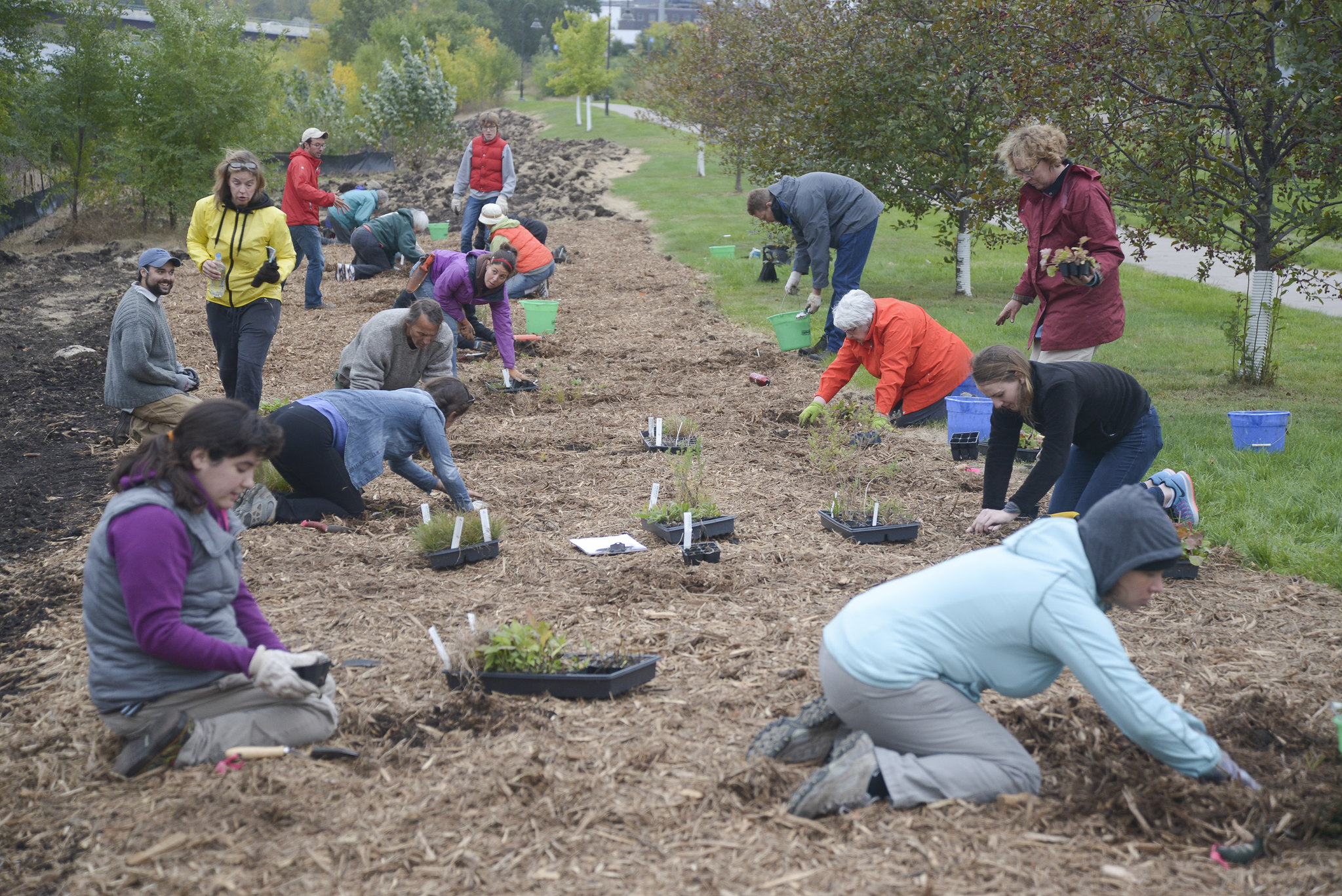 FMR Planting of Ole Olson Park (credit: Minneapolis Park and Recreation Board)