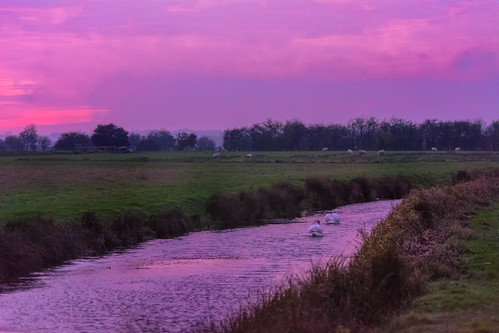 Sunset in Romney Marsh