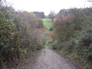 Steep Descent along the Greensand Ridge Walk