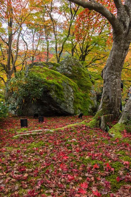 宝厳院の獅子吼の庭の獅子岩