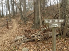 White Tail Trail