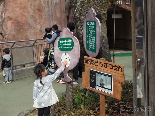 安佐動物公園 (Asa Zoo)