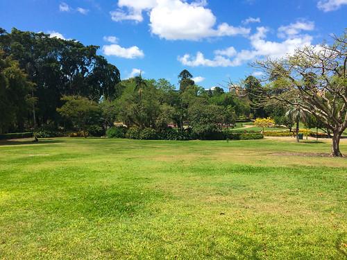Meine Mittags-Aussicht im Botanischen Garten