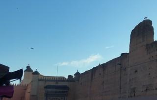 Billede af El Badi Palace.
