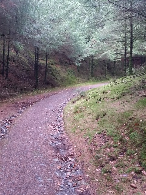 Path up from Fernworthy Reservoir car park