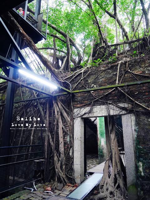 台南一日遊景點推薦安平樹屋安平老街 (18)