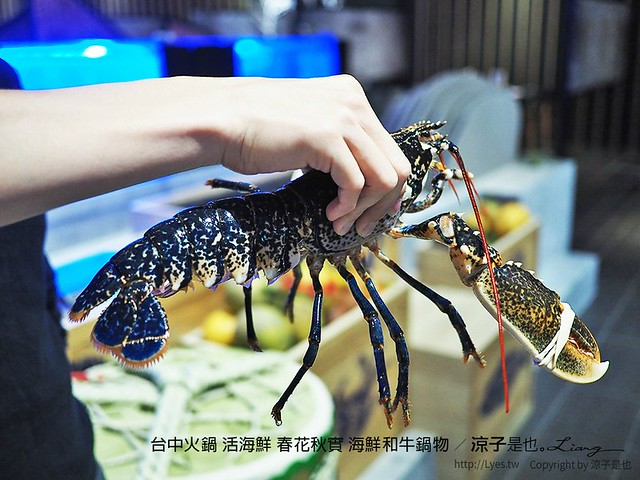 台中火鍋 活海鮮 春花秋實 海鮮和牛鍋物 26