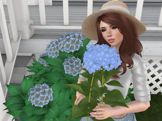 In the garden II