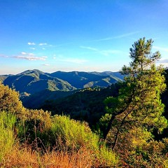 Usual #landscape found in #cevennes #nationalpark   #mountains #colorful #gard #languedoc #france #beautifulfrance #magnifiquefrance #magichour
