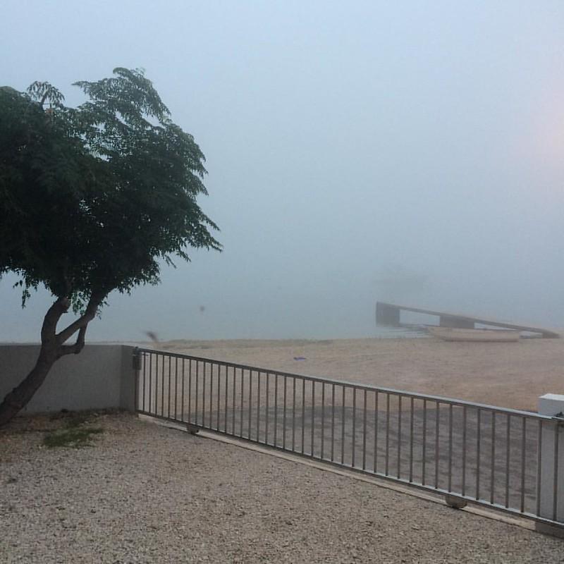 Nebel am frühen Morgen bei 22 Grad, es wird aber sommerliche 32 Grad geben heute #goodmorning #dobrojutro #gutenmorgen aus #Vir  #croatia #hrvatska #holiday #summer #travel #foodbloggerontour #travelblogger