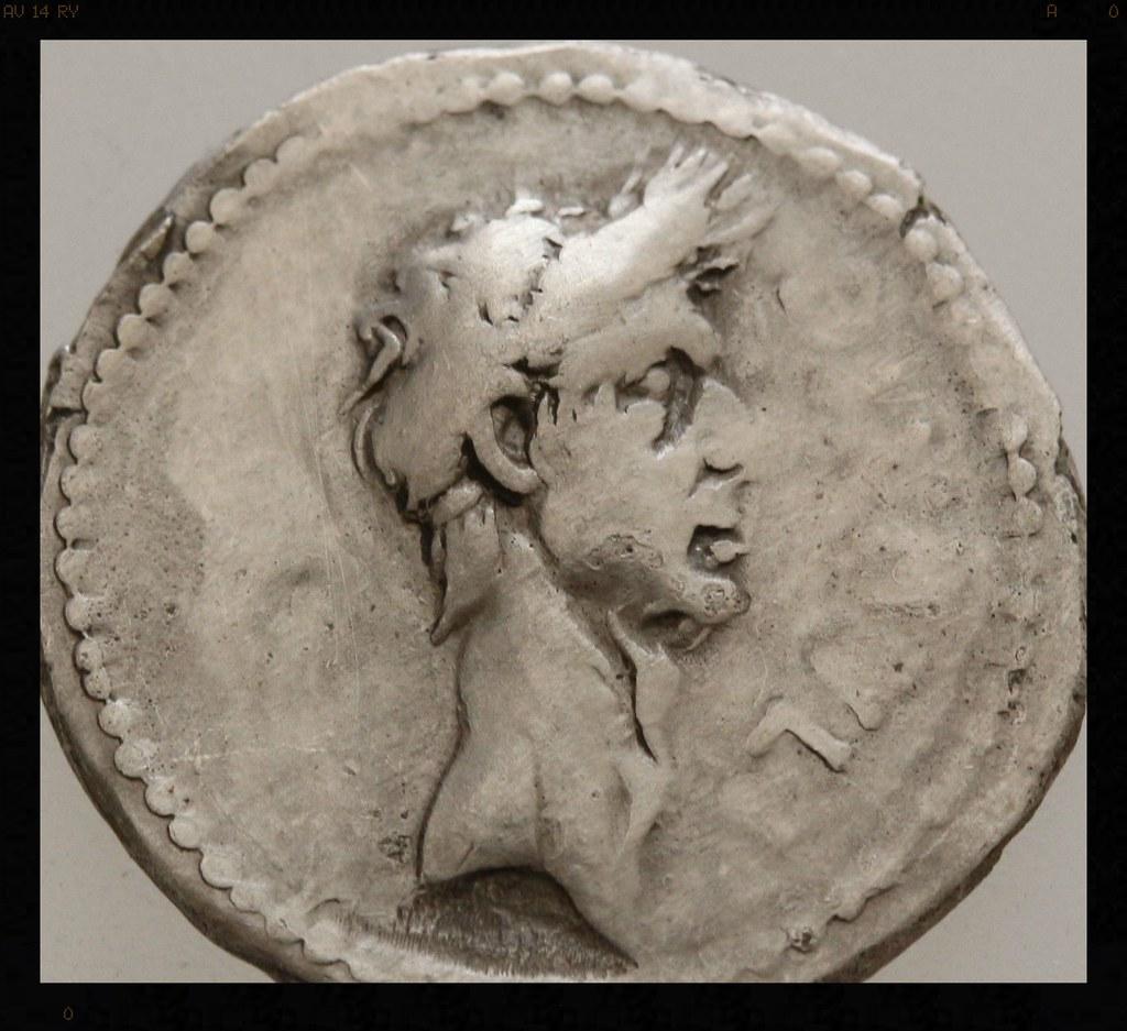 Denario de Julio César. Q VOCONIVS, becerro de pie a izquierda, VITVLVS en ex. 20827679529_82587b0d08_b