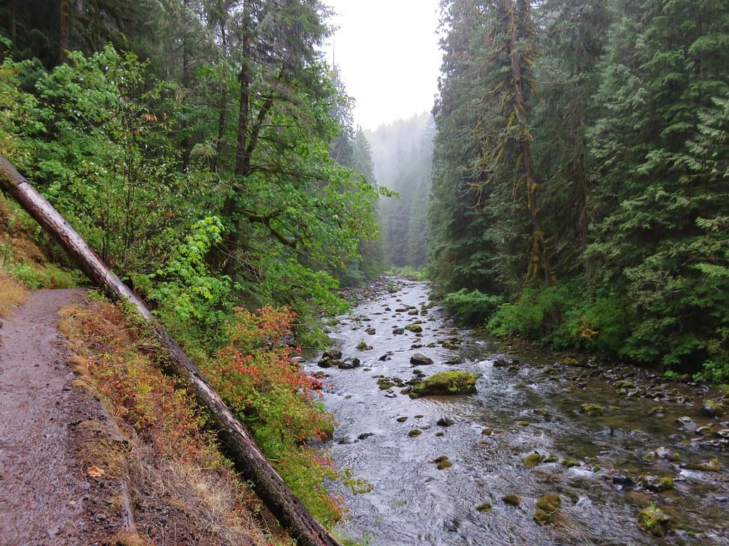 Salmon River Trail along the Salmon River