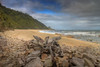 Twin Beach/Heaphy Track. by Phil Webby