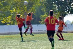 Fútbol base yecla (19)