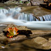 Maple River by Kevin Tupman Photography