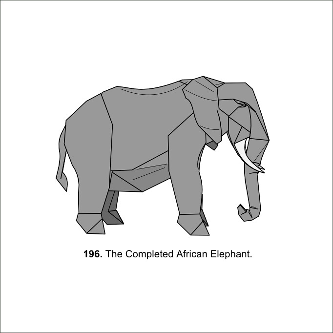 African Elephant  Diagrams    Diagrams for my African
