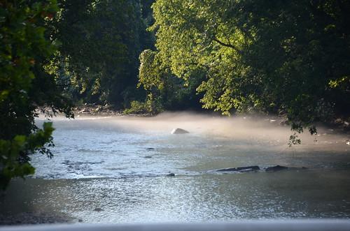 trees water virginia nikon va smithriver bassettva d7000 tamron18270 nikond7000 tamron18270f3563diiivcpzd mistonsmithriver