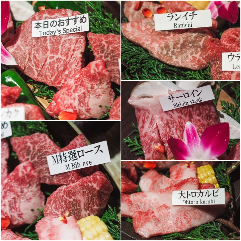 Matsuzaka-Yakiniku-M