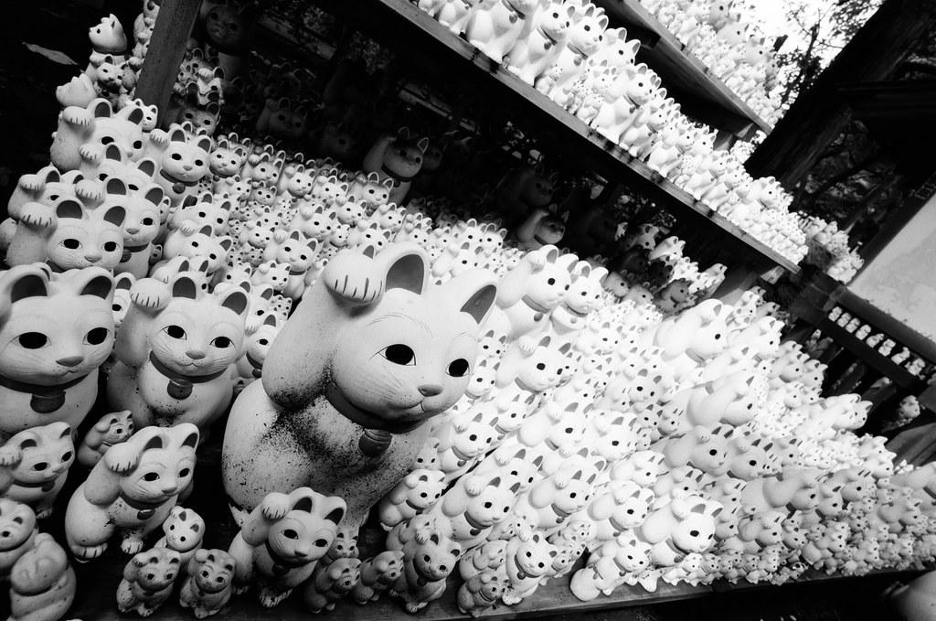 Manekineko's (Fortune cat figures)