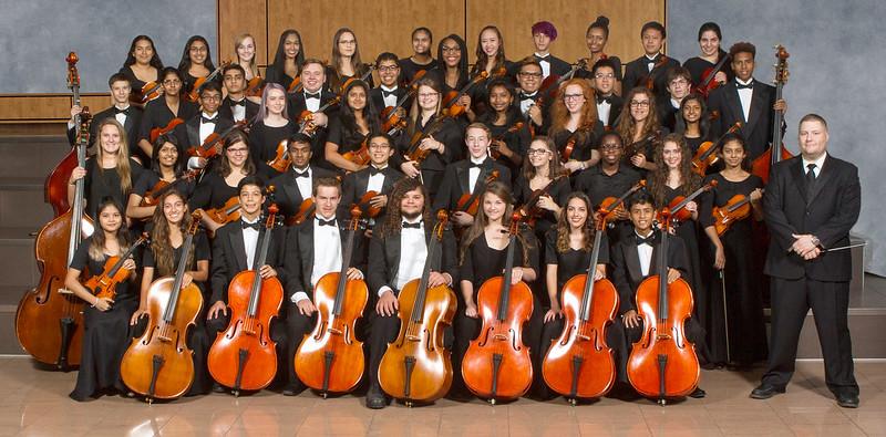 AHS Camerata Orchestra 2016-17